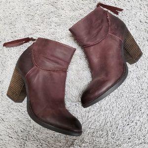 [Steve Madden] Burgundy Ankle Booties